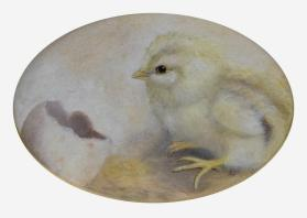 Chick with Egg Shell